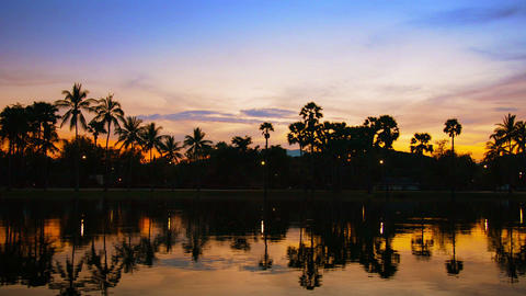 Sunset behind Trees with Shadowy Pond in Foreground Footage