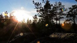 Romantic wintersun in Finland without snow (Time lapse) Footage