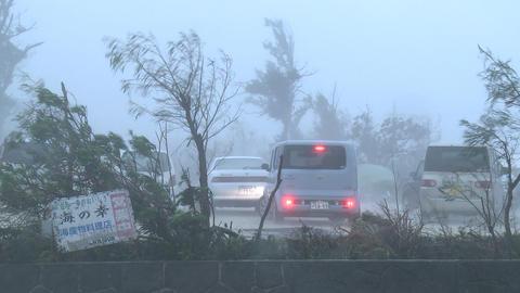 Car Drives In Raging Hurricane Wind Footage