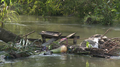Dirty Flood Waters After Storm Footage