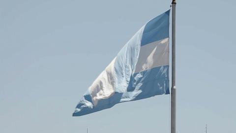 presidential flag ARG 2 Stock Video Footage