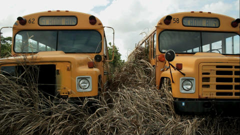 two broken school bus Stock Video Footage