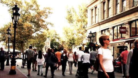 European City Street Budapest Hungary 21 stylized artsoft... Stock Video Footage