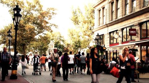 European City Street Budapest Hungary 21 stylized artsoft filmlook Footage