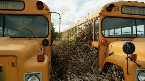 Schoolbus pan Stock Video Footage