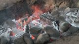 Hawaiian Imu Pit Fire Detail 2 stock footage