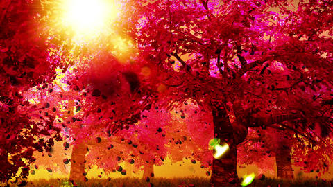 Cherry Blossoms Trees v02 05 falling petals Animation