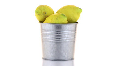 Bucket With Lemons stock footage