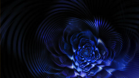 Blue Elegant Fantasy Flower On Black Background stock footage
