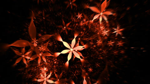floral background , red flowers Animation