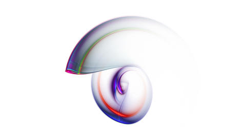 nautilus, colorful abstract on white background Animation