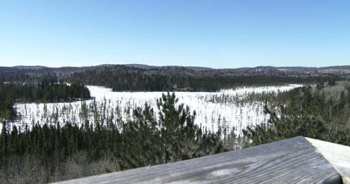 Panoramic view of the wilderness in Algonquin Provincial Park, Canada Footage