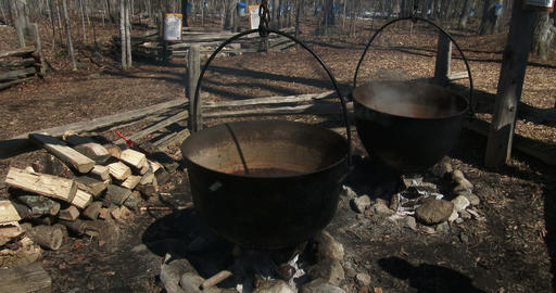 Pots used in the old times to produce maple syrup Footage