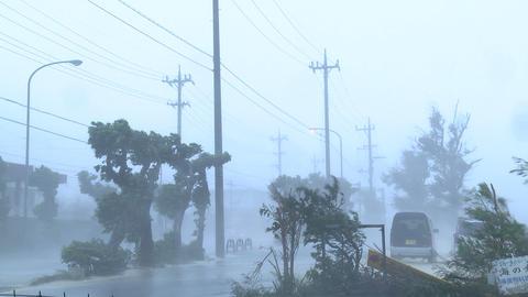 Violent Hurricane Eyewall Winds Lash City Footage
