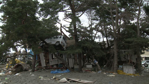 Tsunami Destruction And Aftermath In Japan Car In Tree ビデオ