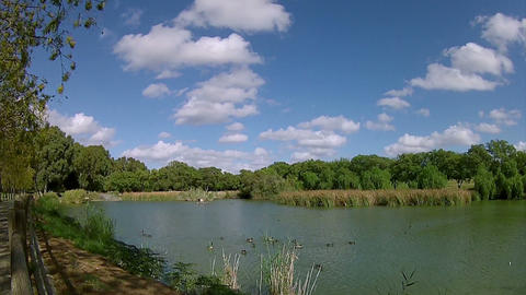 Pan Timelapse Miraflores Park Seville Spain Andalusia 001 50s Footage