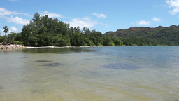 seychelles coast Footage