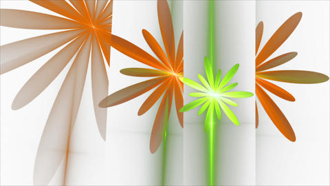 Spring, Floral Background, Orange and Green flowers Animation