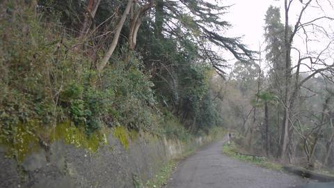 Mountain Uneven Road 2 Live Action