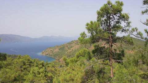 Nature at Marmaris Amazon Bay in Turkey Footage