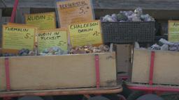 Gemstones in boxes on farmers market Filmmaterial