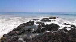 Surf's Up Malibu Footage