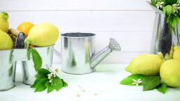 Limes and vintage metal retro watering cans Footage