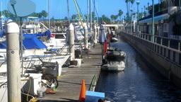 Boardwalk At King Harbor Marina stock footage