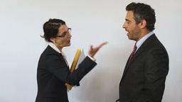 Female Boss Firing Her Employee stock footage