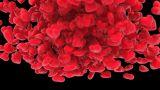 Heart Glossy Fall stock footage