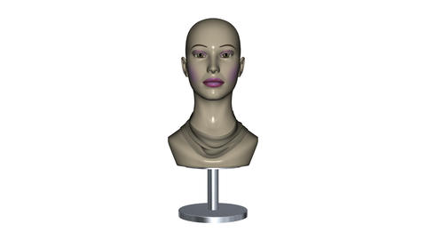 Mannequin Stock Video Footage