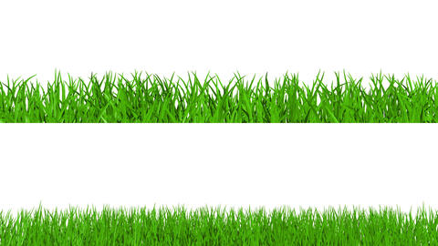 Growing grass with alpha channel Animation