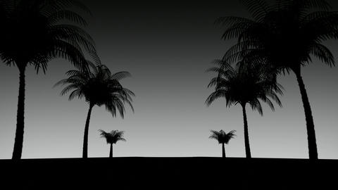 Road with palm trees, loop Animation