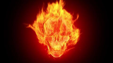 Fire skull, HD loop Stock Video Footage