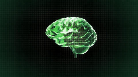 green brain rotate with grid background Stock Video Footage