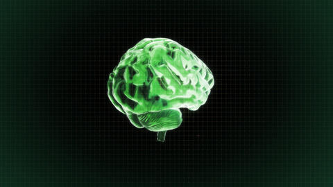 green brain rotate with grid background Animation