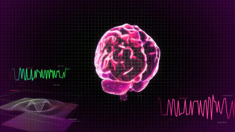 red 3d brain wave scanning screen Animation