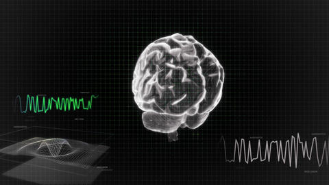 white 3d brain wave scanning screen Animation