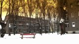 Snowy Suburb 16 stylized Footage