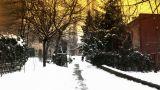 Snowy Suburb 18 stylized Footage