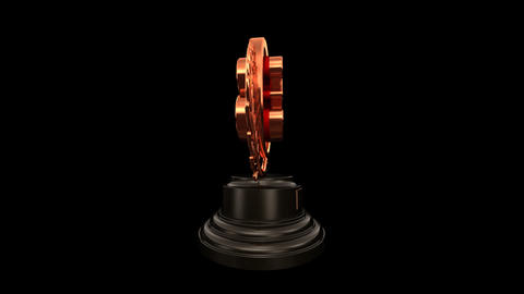 Medal Prize Trophy Bb HD Stock Video Footage