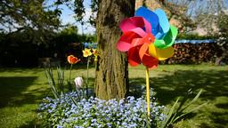 Colordul Garden Pinwheel stock footage