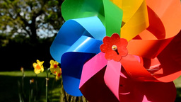 Colordul garden pinwheel Footage