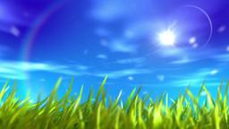 Beautiful summer nature scrolling landscape Animation