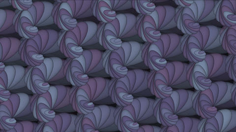 4k Abstract conch shell pattern background,biology fractals geometric backdrop Live Action