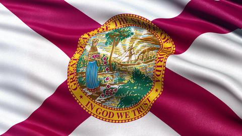 4K Florida state flag seamless loop Ultra-HD Animation