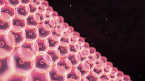 Cells Circle Arrange To Wall Pink Skin stock footage