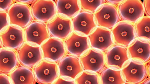 Cells Large Size Glow stock footage