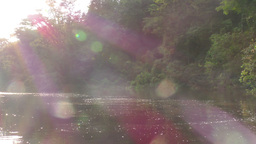 Canoe ride in Amazonian jungle against harsh sunlight Footage