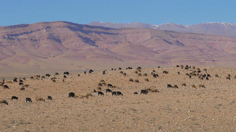 Morrocan Atlas Mountains stock footage